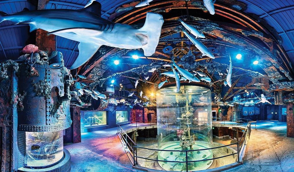 Wonder of Wildlife Museum